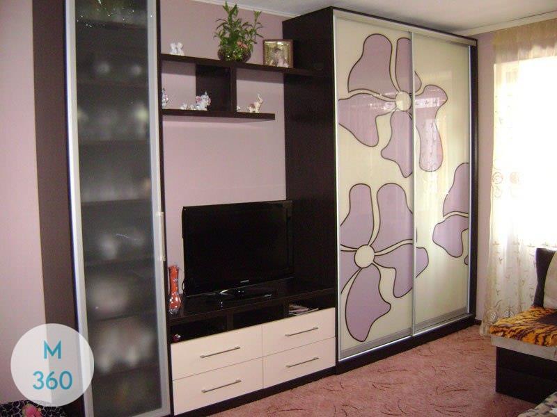 Шкаф купе с нишей под телевизор Майнц Арт 004492403