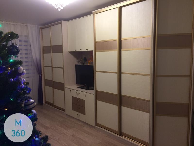 Встроенный шкаф с телевизором Галина Арт 007849432